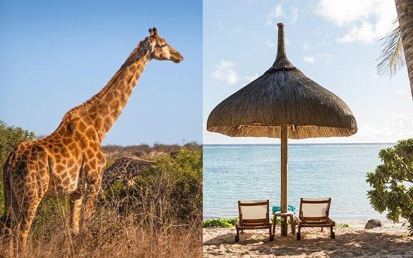 De la savane africaine à l'océan Indien