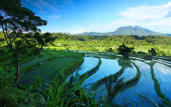 Combiné de 4* et 5* à Ubud, Lombok et Bali