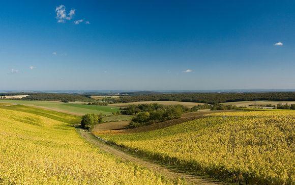 Rendez-vous... dans la Vallée de la Loire