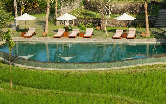 Poussez les portes de l'hôtel Alaya Resort 5* à Ubud