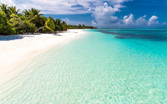 Circuit et Croisière Splendeurs de Floride et des Bahamas