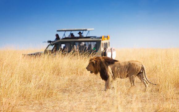 Tour alla scoperta di Botswana e Victoria Falls