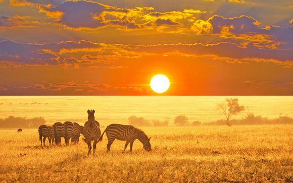 Quintessenza del Sudafrica