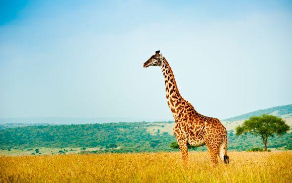Swahili Beach Resort 5* e Safari
