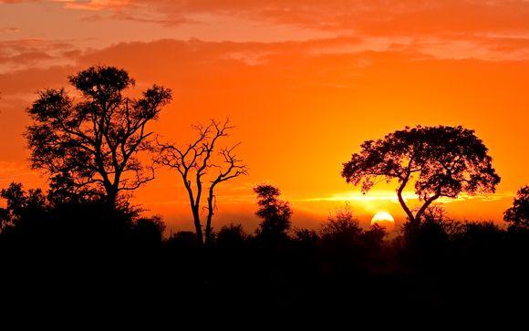 Alla scoperta del Sudafrica
