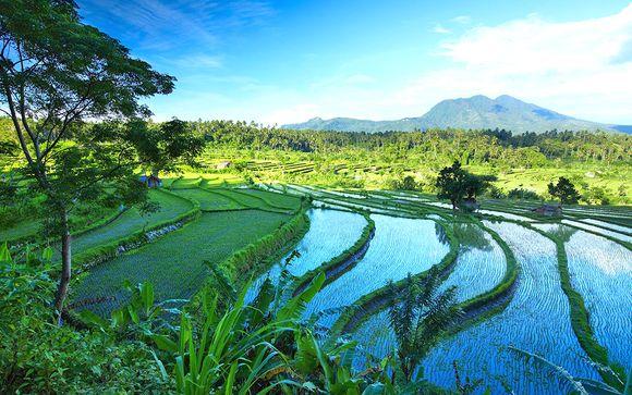 Alla scoperta di Ubud, Lombok e Jimbaran