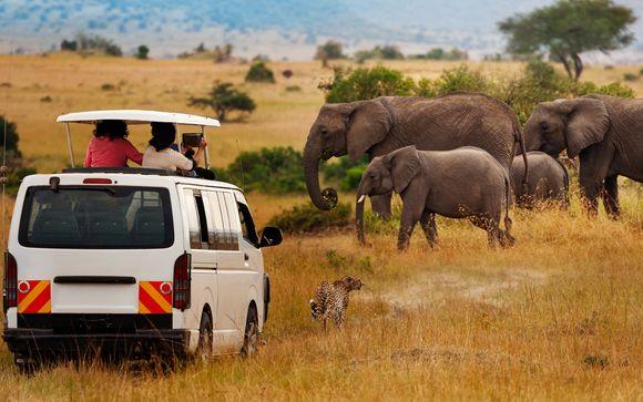 Il Safari