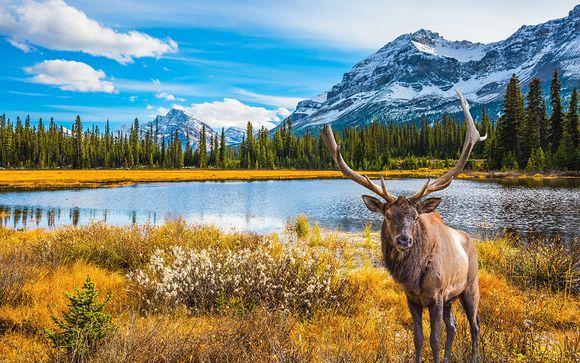 Alla scoperta del Canada occidentale