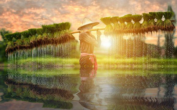Vietnam autentico - Tour privato di 11 giorni con possibile estensione a Mui Ne