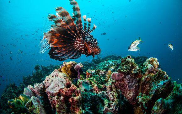 Tanjung - Anema Villa & Resort Gili Lombok 4*