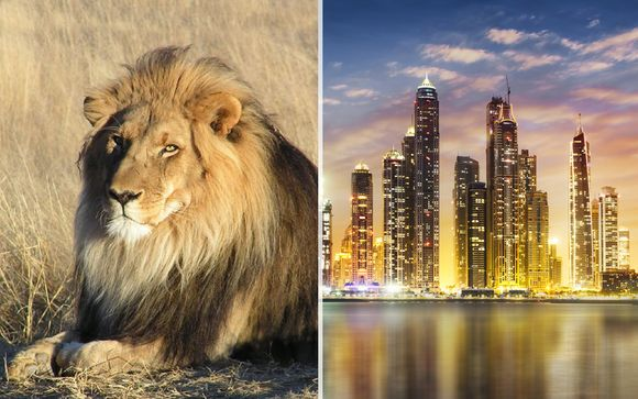 Fly and Drive Sudafrica & Dubai