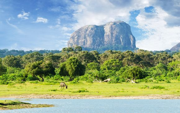 Welkom op... Sri Lanka!