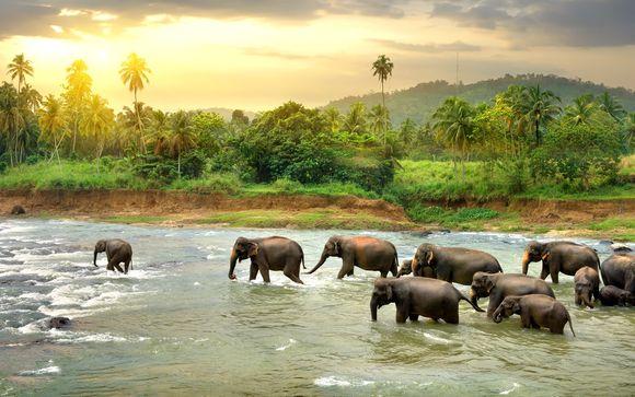 Heritance Tour of Sri Lanka