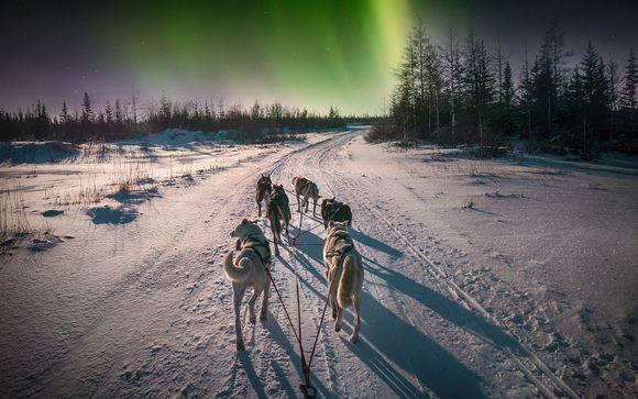 Spring Break Aurora Borealis in Norway