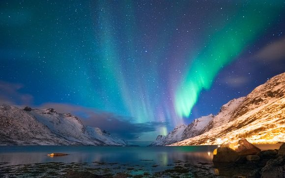 Northern Lights Special