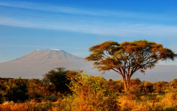 Your Safari Itinerary (with Offer 1 Only)