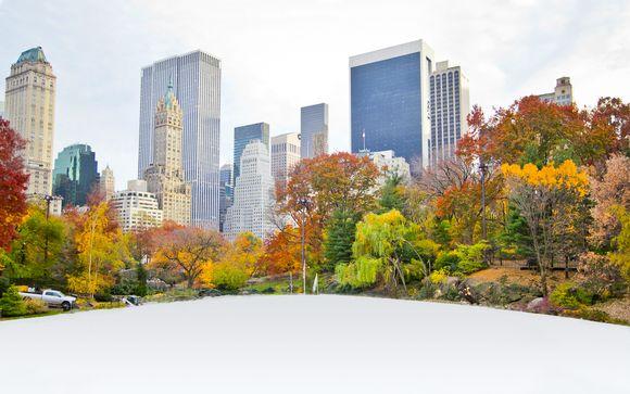 Hilton Garden Inn Central Park South 4*