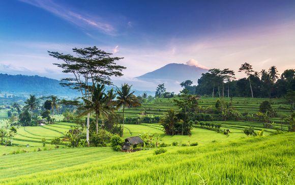 Bali te espera... Tu plan de viaje