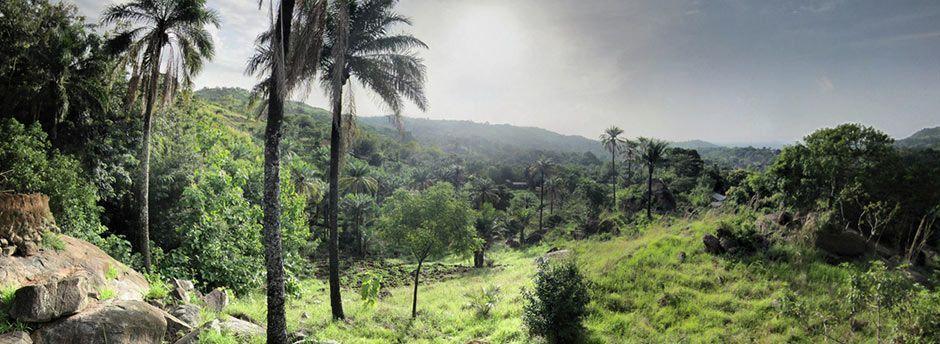 Voyage au Togo