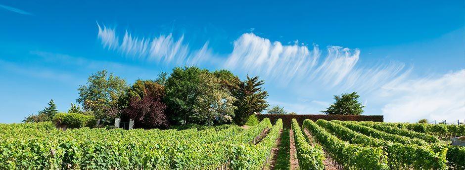 Week-ends en Champagne Ardennes