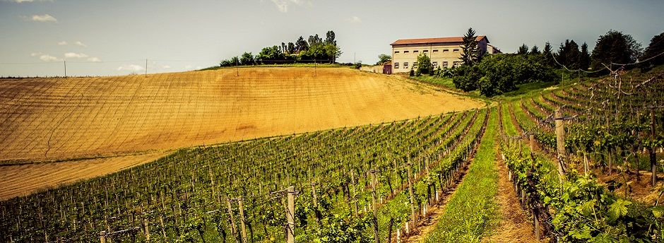 Weekend nel Monferrato