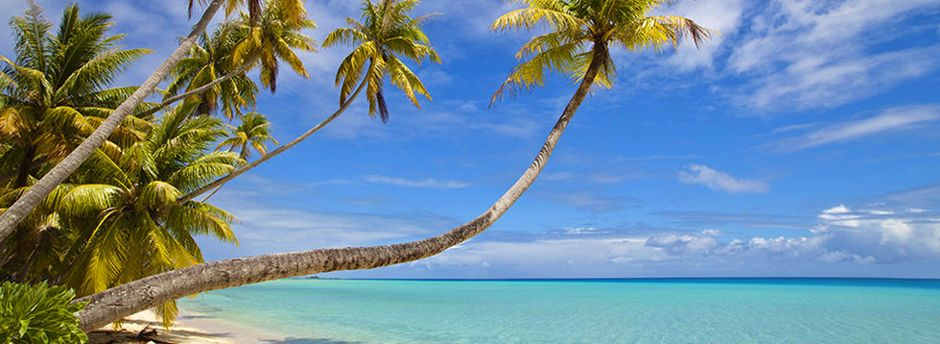 Offerte last minute per Martinica