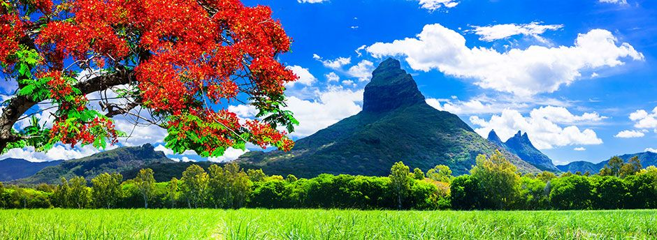 Plan your trip with our Mauritius Travel Guide