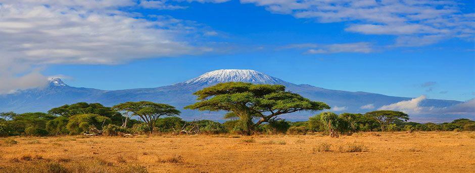 Kenya Free Travel Guide and Practical Information